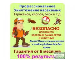 уничтожение насекомых