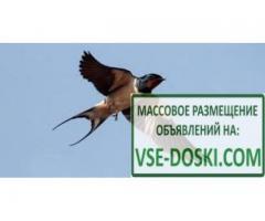 Заработок: http://glprt.ru/affiliate/9594374